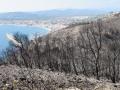 Brand op de berg